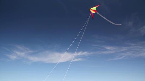 Fall Kite Stock Video Footage