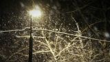 Night Snowfall stock footage
