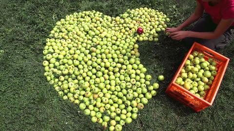 Apple heart Stock Video Footage