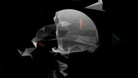 pl 104 Animation