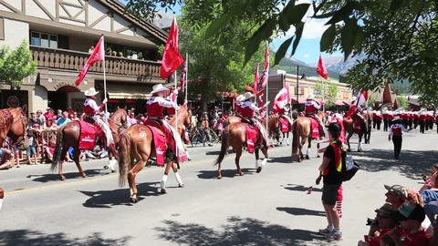 Horses on parade Live Action