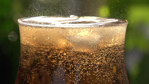 Movement of Bubbles in Sparkling Wine Footage