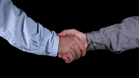 Young Adult Men Shaking Hands Full Keyed Bundle stock footage