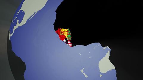 Ebola Virus Spread on Earth 3 D Animation 1 CG動画