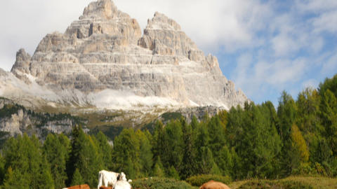 tilt three peaks to cows dolomite alps audio 11542 Footage