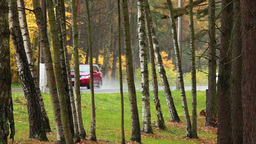 Autumn Rain Road stock footage