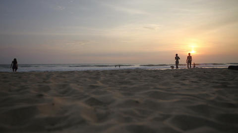 People silhouettes at sunset Footage
