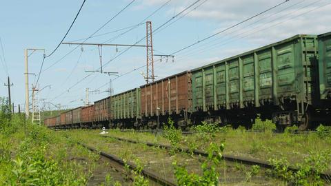 POLJARNIE ZORI. RUSSIA - CIRCA JUN 2014: Long frei Footage