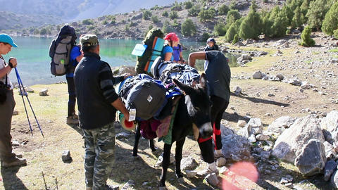 On a donkey loaded with backpacks. Tajikistan Footage