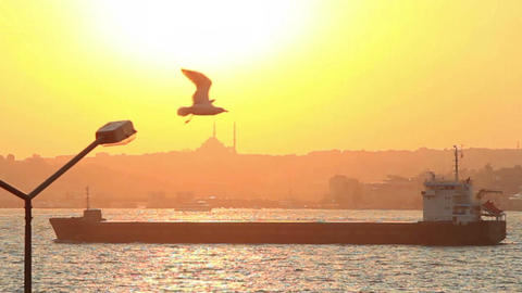 Tanker ship sailing at sunset in Istanbul Footage