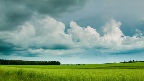 Green field with overcast clouds time lapse Footage