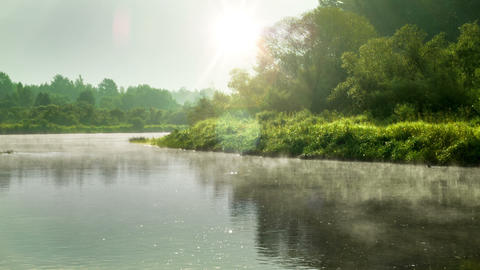 Morning at the river Footage