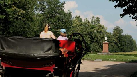 driving off horse carriage Stock Video Footage