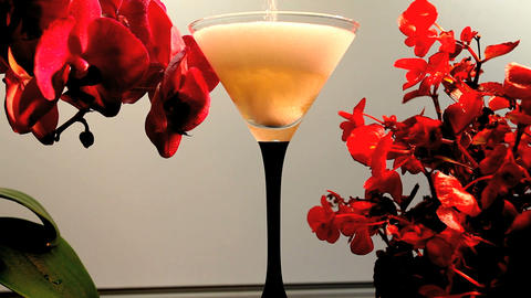 wineglass and Orchids Footage
