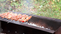 Barbeque Stock Video Footage