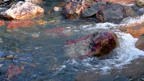 Waterfalls in the Mountains Norway, loop Footage