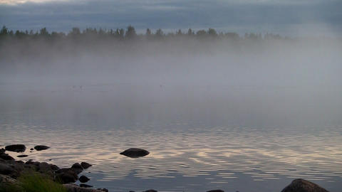 fog and ripples on a lake, loop Footage
