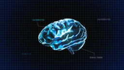 Blue Brain With Code stock footage