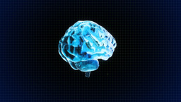 brain rotate with grid background Stock Video Footage