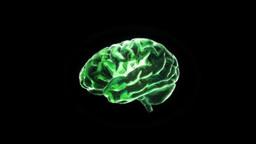 green brain Stock Video Footage