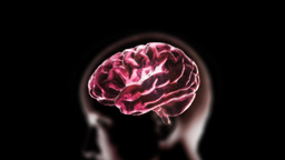 red head brain Stock Video Footage
