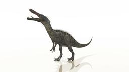 Dinosaur Stock Video Footage