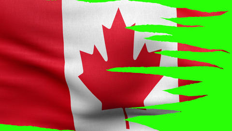 Flag of Canada tattered 4 K Animation