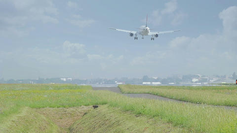 Commercial Airliner Landing From Behind stock footage
