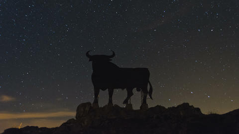 Night Sky Stars Timelapse and Black Bull Billboard Footage