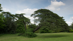 beautiful english countryside 4k Footage