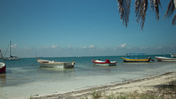 caribean island tropical cancun mexico beach 4k Footage