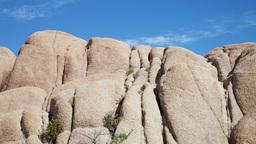 joshua tree rocks california usa Footage