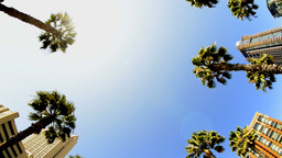 2012 October San Diego 9 Footage
