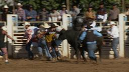 Bull Riding good clip 10 Footage