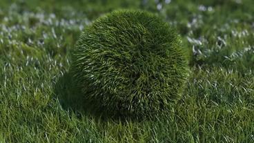 草が付いているボールエフェクト After Effectsテンプレート