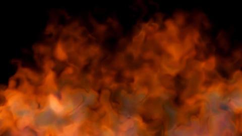fire on black background - red hot turbulent burni Animation