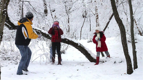 Family Having Snowball Fight Footage