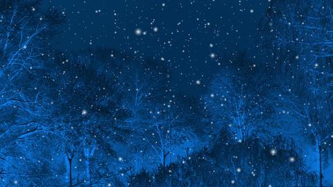 Winter Dream stock footage