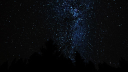 Milky Way above the Forest Footage