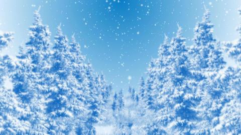 Winter Dream Animation