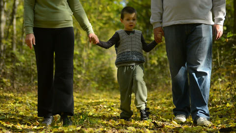 Family walk in the woods Footage