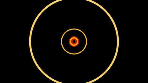 colorful circle pulse Animation