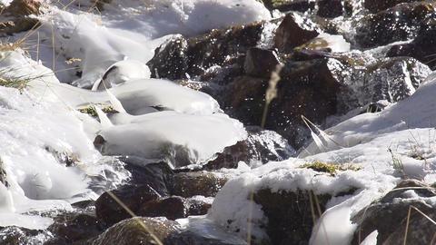 Brook Among Ice Build up Footage