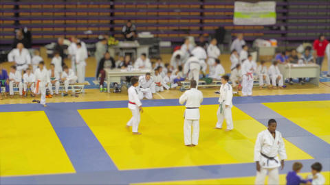 Judo indoor Competition Live Action
