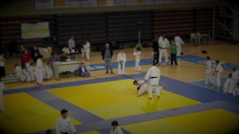 Judo Indoor Stock Video Footage