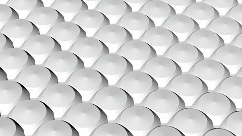 white poly array Animation