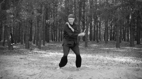 Rem Plugatar.Master Of Wushu,wu Hsing (five Elemen stock footage
