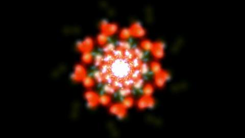 Deformation flower... Stock Video Footage