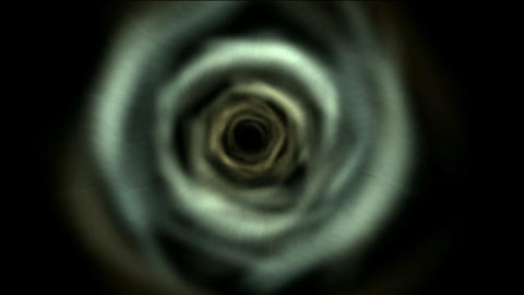rotation hole,the centre of tornado,flower,petal,c Stock Video Footage