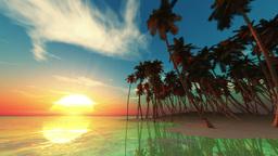 Beach Animation